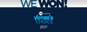 Sego Lily Spa is 2017 KSL Voter's Choice Winner!